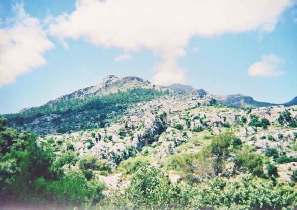 Majorca (25)-b