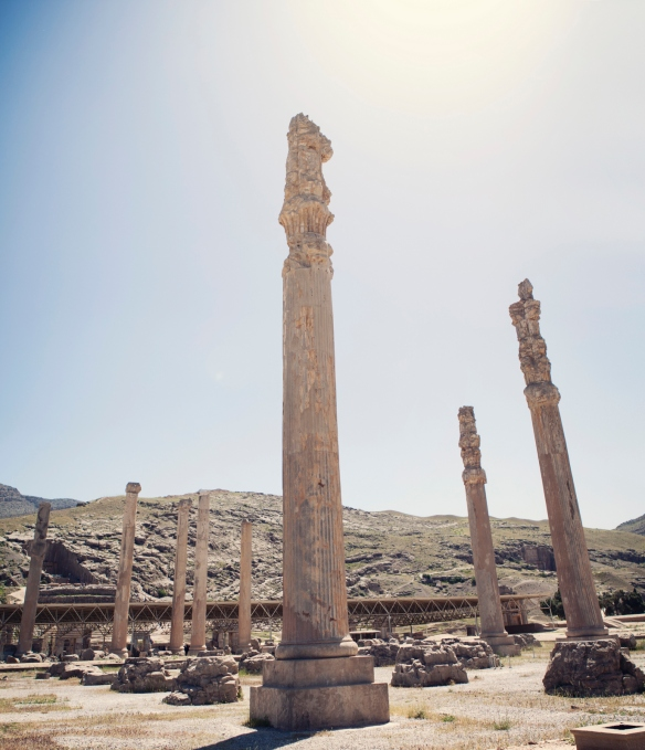 Persepolis Columns Pano 2